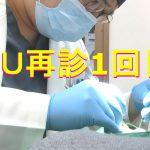 3【韓国整形】渡韓検診1回目ルフォーIVRO両顎手術経過EU口腔外科&渡韓サポーター青い魔女